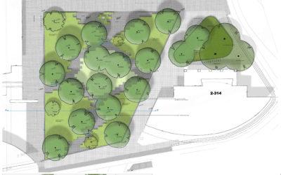 Bomenplan voor Eindhoven